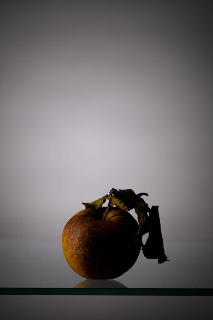 Corporate - Produktfotografie ©lisalux